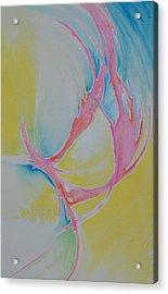 Free Bird Acrylic Print by Seth Govan