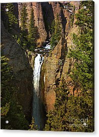 Acrylic Print featuring the photograph Free Fall by Robert Pearson