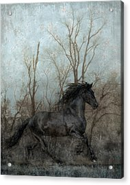 Free Acrylic Print by Jean Hildebrant