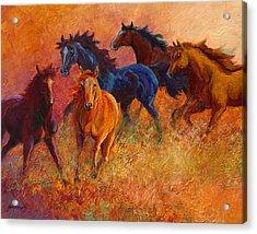 Free Range - Wild Horses Acrylic Print
