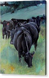 Free Range Cow Girls Acrylic Print