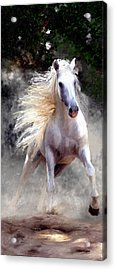 Acrylic Print featuring the painting Free Spirit #2 by James Shepherd