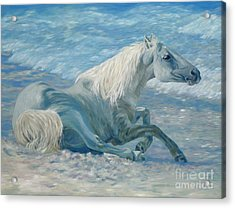 Free Spirit Acrylic Print by Danielle  Perry