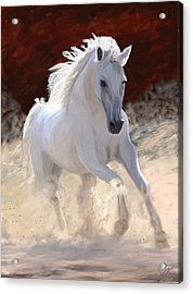 Free Spirit Acrylic Print by James Shepherd