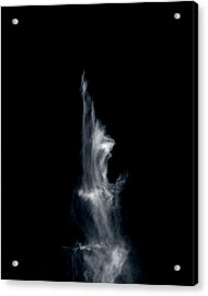 Acrylic Print featuring the photograph Freed Soul by Maggy Marsh