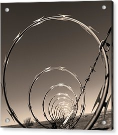 Freedom Acrylic Print by Don Spenner