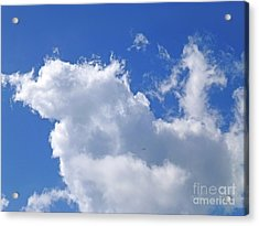 Acrylic Print featuring the photograph Freedom by Francesca Mackenney