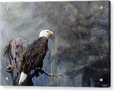 Freedom Haze Acrylic Print by Steve Goad