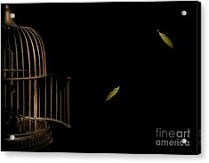 Freedom Acrylic Print by Jan Piller