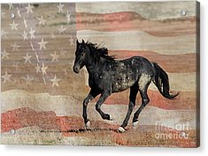 Freedom Run Acrylic Print by Nicole Markmann Nelson