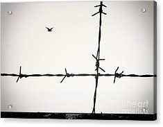 Freedom To Be Yourself... Acrylic Print