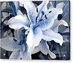 Freeze Acrylic Print