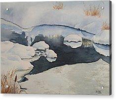Freeze Up Acrylic Print by Debbie Homewood