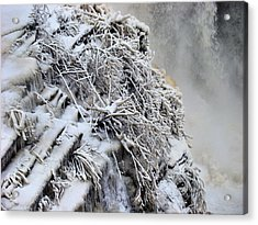 Freezing Falls Acrylic Print by Tingy Wende