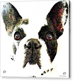 French Bulldog Art - High Contrast Acrylic Print by Sharon Cummings