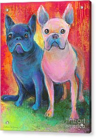 French Bulldog Dogs White And Black Painting Acrylic Print by Svetlana Novikova