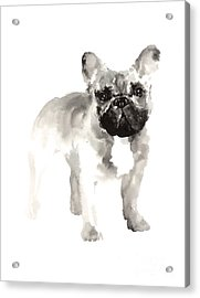 French Bulldog Drawing For Nursery Room Acrylic Print