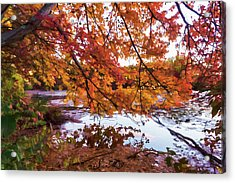 French Creek 15-107 Acrylic Print by Scott McAllister