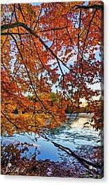 French Creek 15-110 Acrylic Print by Scott McAllister