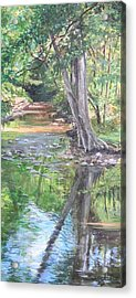 French Creek Acrylic Print by Denise Ivey Telep
