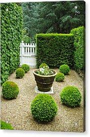 French Garden V Acrylic Print by Wendy Uvino