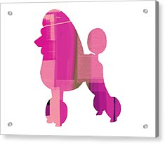 French Poodle Acrylic Print by Naxart Studio