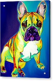 Frenchie - Tugboat Acrylic Print by Alicia VanNoy Call