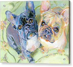 Frenchies Acrylic Print