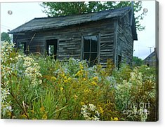 Fresh And Old Acrylic Print by Dennis Curry