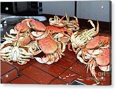Fresh Cooked Crabs At Fishermans Wharf San Francisco California 7d14459 Acrylic Print