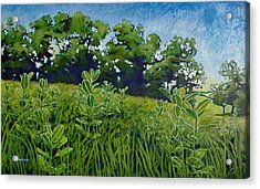 Fresh Field Acrylic Print
