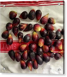 Acrylic Print featuring the photograph Fresh Figs by Kim Nelson