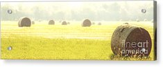 Fresh Hay In The Morning Acrylic Print by Tamyra Ayles