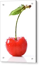 Fresh Red Cherry Isolated On White Acrylic Print by Sandra Cunningham