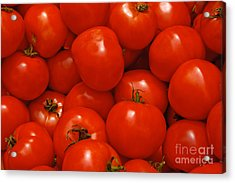 Fresh Red Tomatoes Acrylic Print by Thomas Marchessault