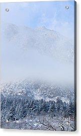 Fresh Snow In Cheyenne Mountain State Park Acrylic Print