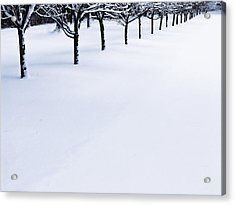 Fresh Snow Acrylic Print