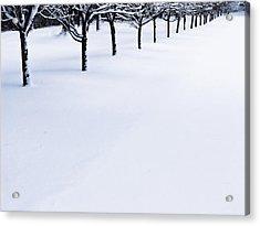 Fresh Snow Acrylic Print by John Hansen