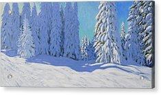 Fresh Snow  Morzine  France Acrylic Print by Andrew Macara