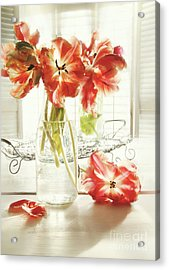Fresh Spring Tulips In Old Milk Bottle  Acrylic Print by Sandra Cunningham