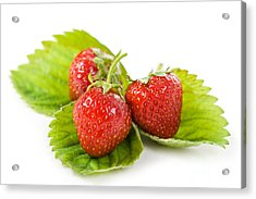 Fresh Strawberries Fruits Lying On Leaf On White  Acrylic Print by Arletta Cwalina