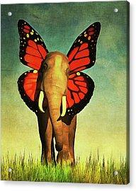 Friendly Elephant Acrylic Print