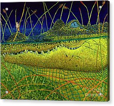 Swamp Gathering Acrylic Print
