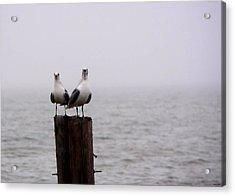 Friends In The Fog Acrylic Print
