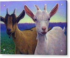 Friends Acrylic Print by James W Johnson