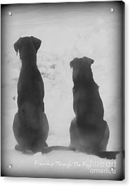 Acrylic Print featuring the photograph Friends Through The Fog by Lila Fisher-Wenzel
