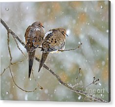 Friends Through The Storm Acrylic Print