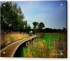 Friends Walking The Wetlands Trail Acrylic Print