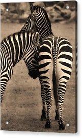 Friendship - Amis Acrylic Print
