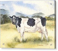 Acrylic Print featuring the painting Friesian Cow by Sandra Phryce-Jones